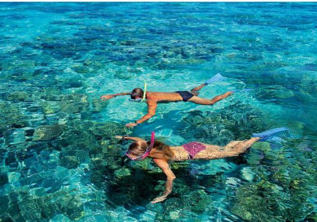 Croisière d'une journée à Green Island sur la Grande Barrière de Corail & tour en semi sous-marin – Au départ Cairns image 2