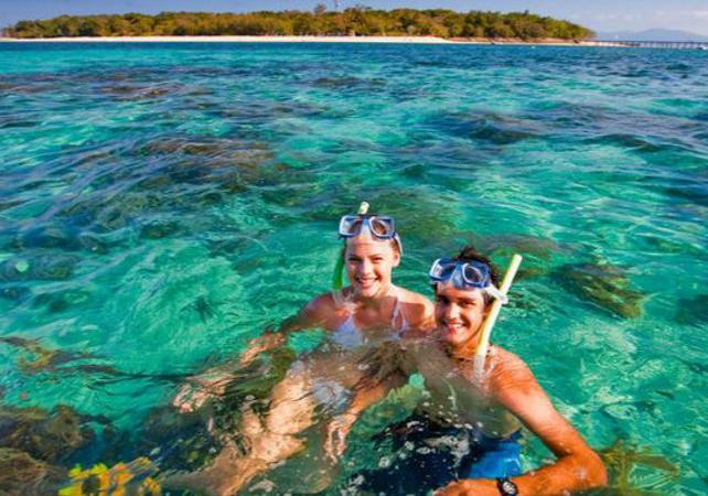 Croisière d'une demi-journée sur la Grande Barrière de Corail & tour en semi sous-marin en option – Au départ Cairns image 1