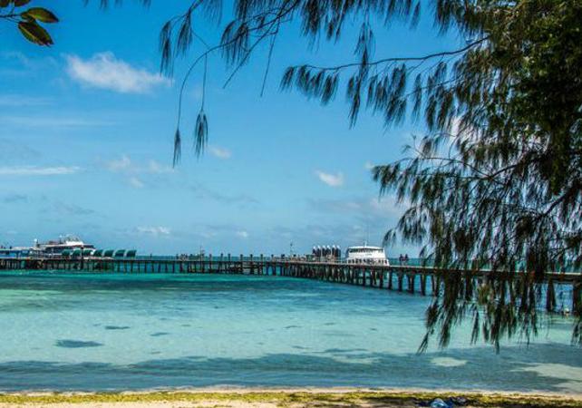 Croisière d'une demi-journée sur la Grande Barrière de Corail & tour en semi sous-marin en option – Au départ Cairns image 3