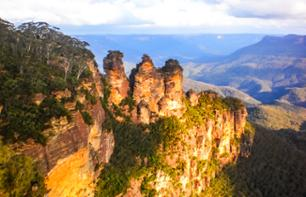 One-Day Excursion in the Blue Mountains meeting Australian Animal Species