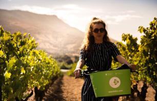 Guided Electric Bike Tour in the Comte Peraldi Vineyards and Wine Tasting - Departure from Ajaccio