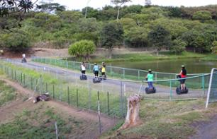 Segway Ride in Noumea's Parc Zoologique & Forestier