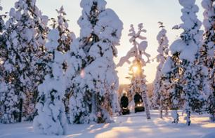 Forest Tour by Snowmobile in Lapland (2 hours) - Departure from Rovaniemi