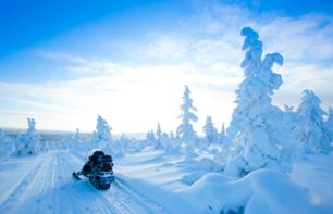 1 Hour Snowmobile Trip in Lapland's Forests - Departure from Rovaniemi