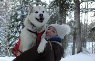 Dog-Sledding Excursion – Full-day trip (approx. 2hrs 30 mins from Montreal and 3hrs 30 mins from Quebec)