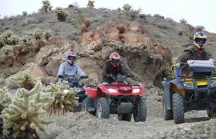 Escursione in quad all'Eldorado Canyon e visita di una miniera d'oro
