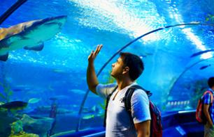 Billet Aquarium de Barcelone