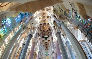 Visite guidée sur l'univers de Gaudi – billet coupe-file Sagrada familia inclus