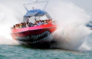 "Extreme speed boat cruise on board ""Codzilla"" - Boston"