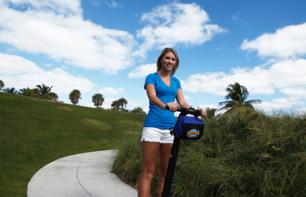 Segway Tour along the Miami River
