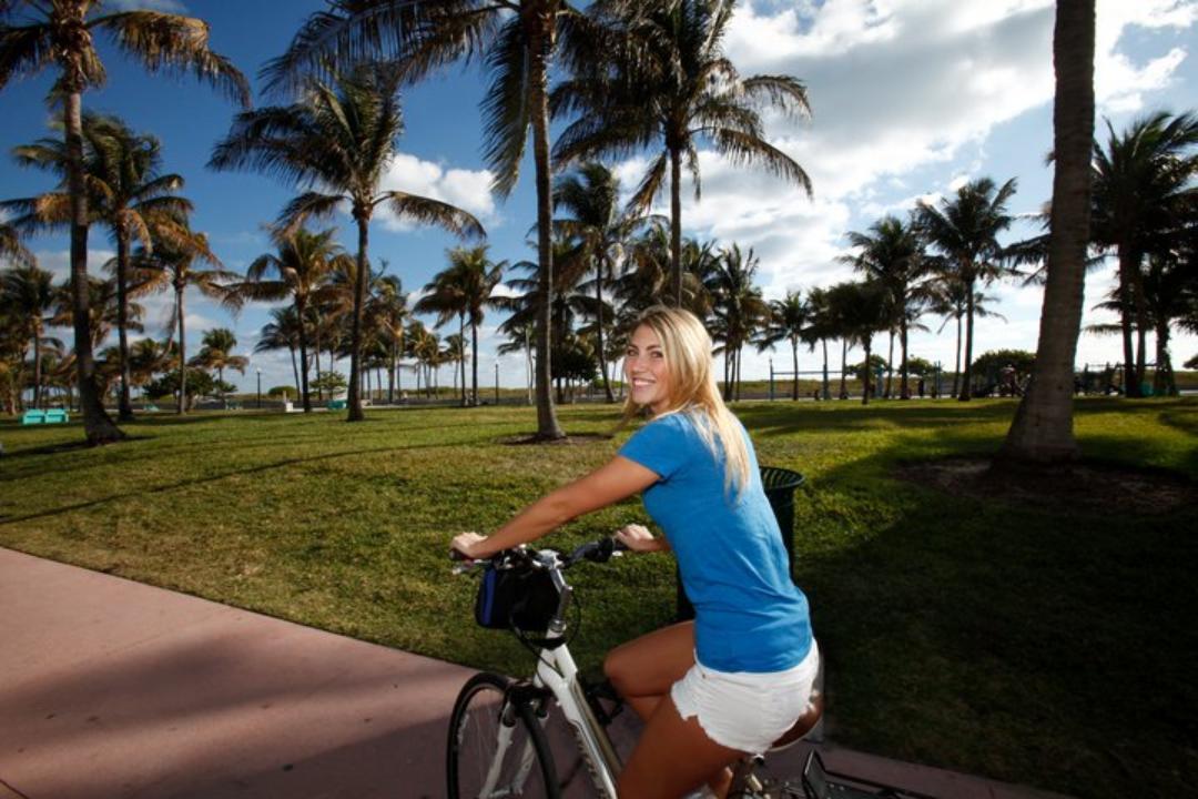 Ver la ciudad,Visitas en bici,Visitas en segway,
