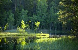 One-day hike to Nuuksio National Park