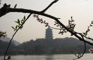 Day trip to Hangzhou - Private guided tour