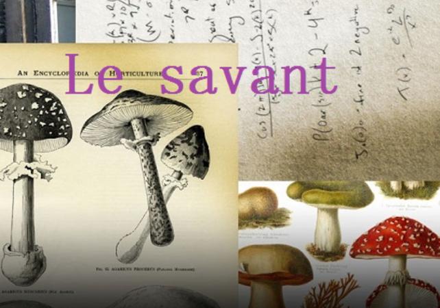 Le Savant - Jeu d'aventure et d'énigmes - Singapour -