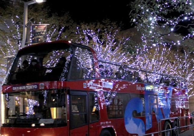 Tour des illuminations de Noël de Tokyo en bus - Tokyo -