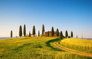 Day Trip around Florence: Chianti, Siena and San Gimignano