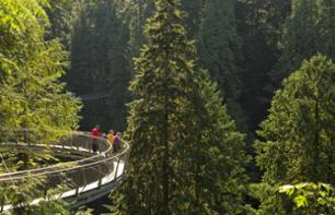 Capilano Suspension Bridge Crossing and Walk amongst the Tree Tops