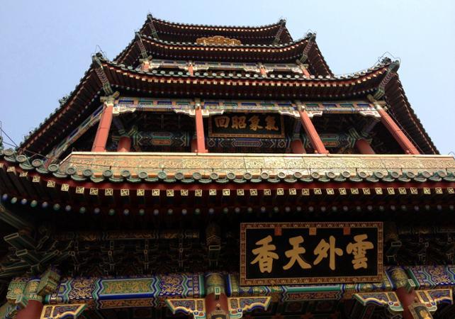 Visite privée du Zoo de Pékin et du Palais d'été - Pekin -