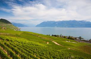 Sightseeing Cruise On Lake Geneva and Discover The Lavaux Vineyards – Departing From Lausanne