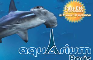 Paris Aquarium: 4-Person Summer Pass