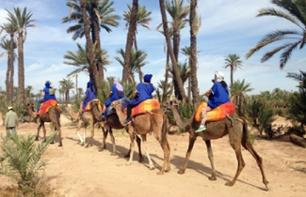 Camelback ride in the Palmeraie (Palm Grove) - Marrakech