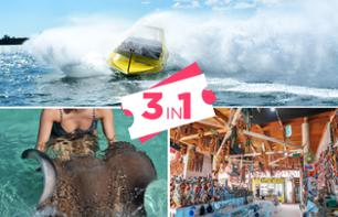 3-in-1 Tour: Giant Speed Boat, Swimming with Ray Fish & an Artisanal Walk – Departing from Punta Cana