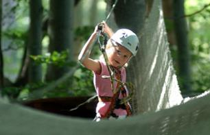 Tree-Climbing Adventure Park in Vizzavona Forest - 1 hour from Ajaccio