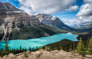 Photo expedition: 6 days in the heart of Jasper National Park