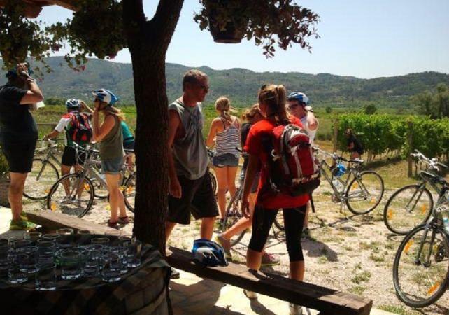 Photo Visite guidée autour de Dubrovnik en vélo et à pied