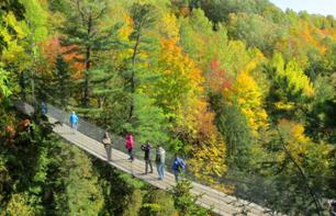 Tickets for the Canyon Sainte-Anne – 30 minutes to the east of Quebec