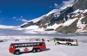 Excursion to the Athabasca Glacier on Board the Ice Explorer – Departing from Banff