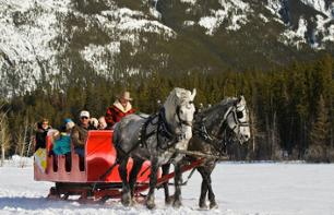 Horse-Drawn Sleigh Ride in the Canadian Rockies – Departing from Banff