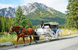 Private Horse-Drawn Carriage Ride in the Canadian Rockies – Departing from Banff