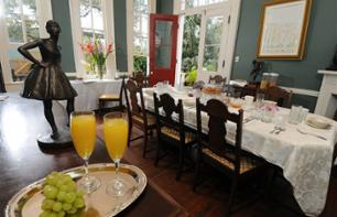 Cultural morning: Visit to the House of Edgar Degas and a Creole breakfast