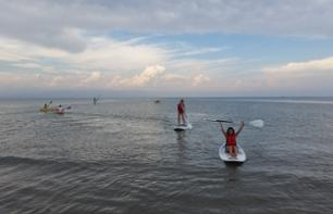 Paddle Board Rental - 1 hour from Tarragona - Ebro Delta