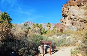 Jeep Tour and Hike to Indian Canyons – Leaving from Palm Springs