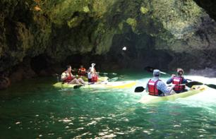 Guided Kayak Tour of Grottos and the Ponta da Piedade in Algarve - Lagos