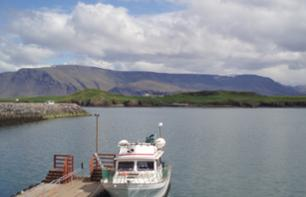 Ferry Transfer from Reykjavik to the Island of Viðey – Departing from the old Reykjavik harbour