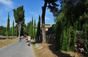 Guided Tour of Rome by Electric Bike – Via Appia, the Colosseum and the Baths of Caracalla