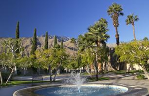 Visita de Palm Springs e Shopping Tour