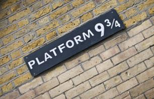 Harry Potter Themed Guided Visit of London