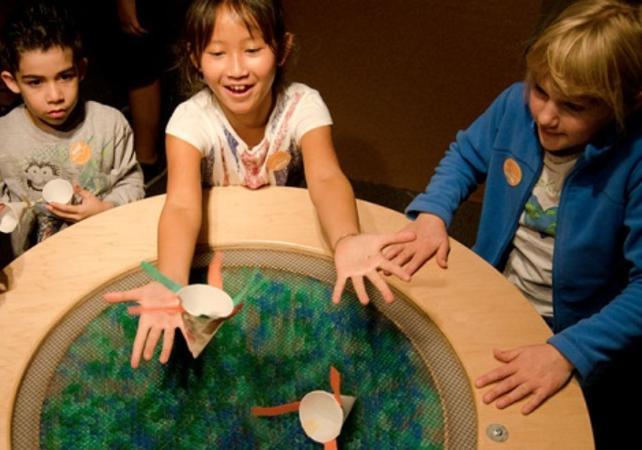 Billet Exploratorium - Musée éducatif et interactif à San Francisco - San Francisco -