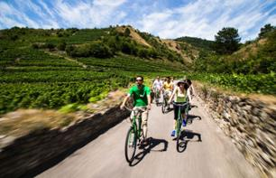Bike Tour and Wine Tasting in the Wachau Valley - Departure from Vienna