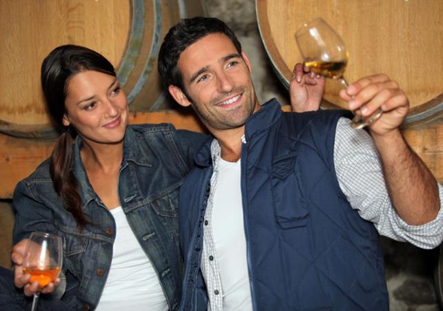 Demi-journée dans le Beaujolais : découverte de ses vignobles et dégustations de vins - Lyon -