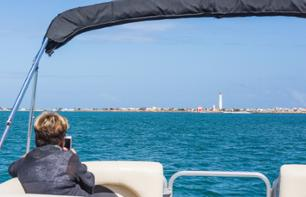 Boat ride: Deserta Island and Farol Island - departing from Faro