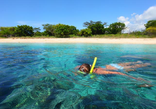 Croisière d'observation des dauphins et plongée avec tuba image 3