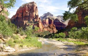 Trip to Zion National Park and the Mojave desert - VIP tour