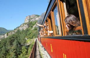 Ticket for the Pignes Steam Locomotive - Roundtrip with Departure from Puget Théniers (1hr 15mins from Nice)