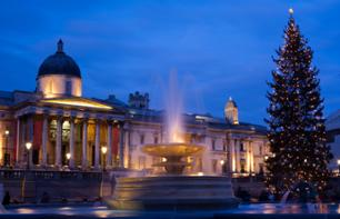 Tour di Londra by night a Natale