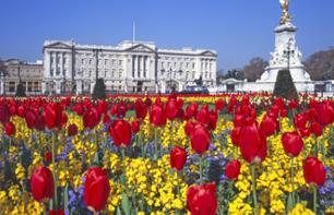 Billet Buckingham Palace avec audioguide - Londres
